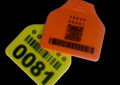 código QR y barras